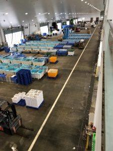 南予水産業(八幡浜市魚市場)
