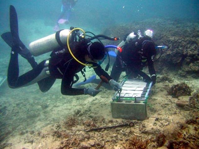 サンゴ礁の劣化の原因を探るためにサンゴ幼生の着底調査の準備をする研究者